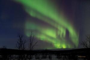 Tromso-20150311-5D3-0094lowRes
