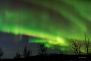 Tromso-20150311-5D3-0096lowRes