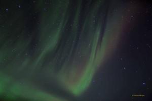 Tromso-20150311-5D3-0155lowRes